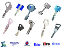 FICHET, HERACLES, CISA, KABA KESO, MULTLOCK, VACHETTE, FTH, BRICARD, JPM, METALUX, POLLUX, STREMLER, FERCO, PICARD, RONIS, YALE, REELAX, LAPERCHE DOM, ABUS, etc.